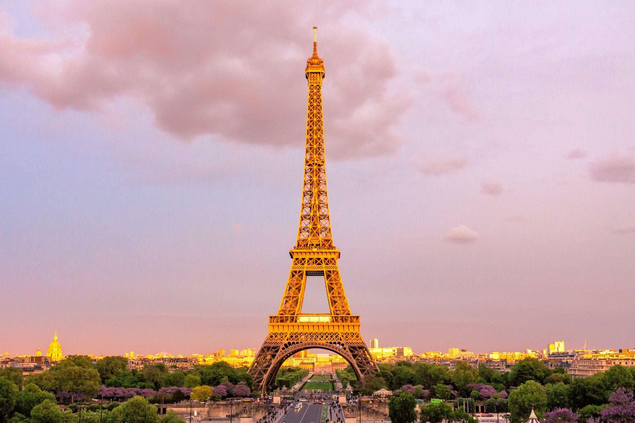 Paris - Eiffel Tower photo